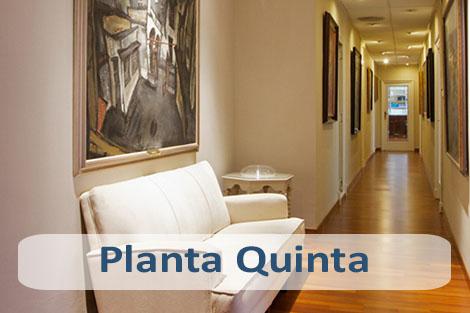 Planta Quinta