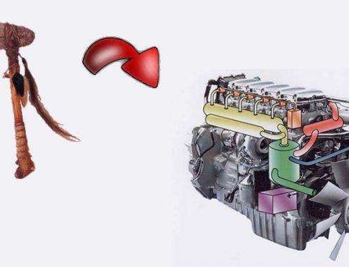 El dominio de la energía; del hacha de sílex al motor de explosión