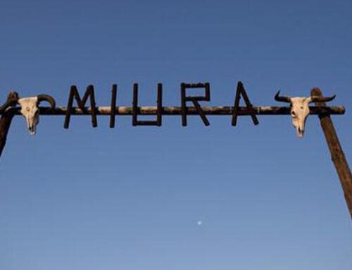 Entrevista a D. Eduardo Miura y las plazas de toros de Asturias